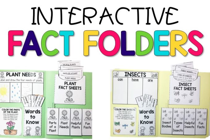Interactive Fact Folders for Spring